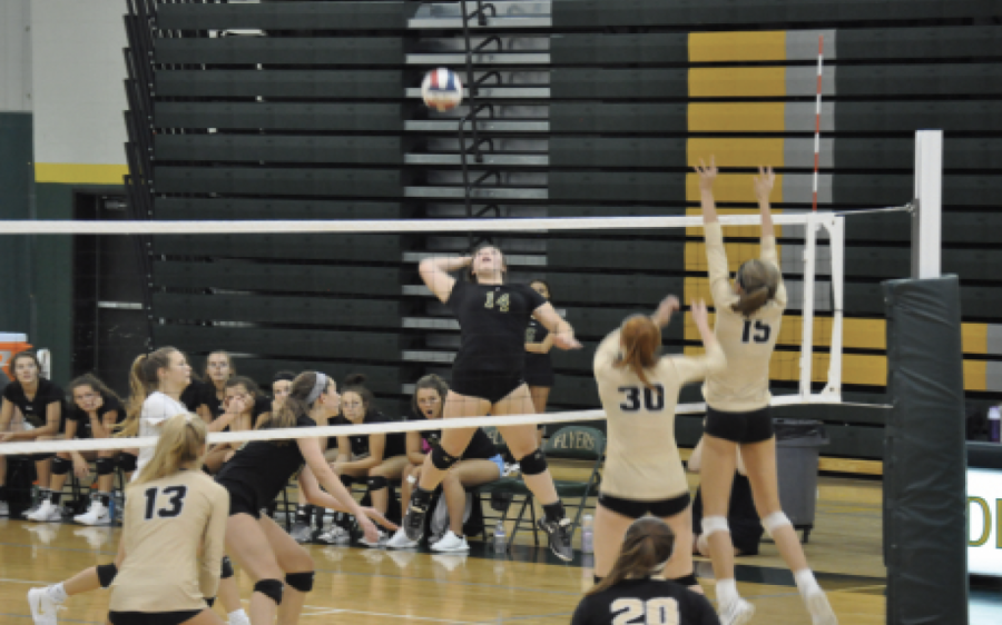 Halle Fisella (11, #14) scores on Lafayette during Volleyball's senior night. The girls lost to the Lancers 2-0.