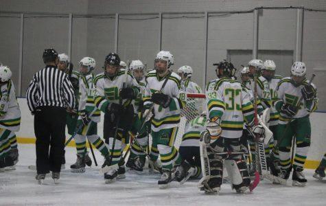 Hockey falls to Edwardsville 0-2